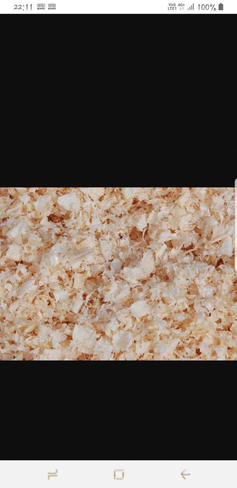 Screenshot_20190425-221145_Samsung Internet.jpg