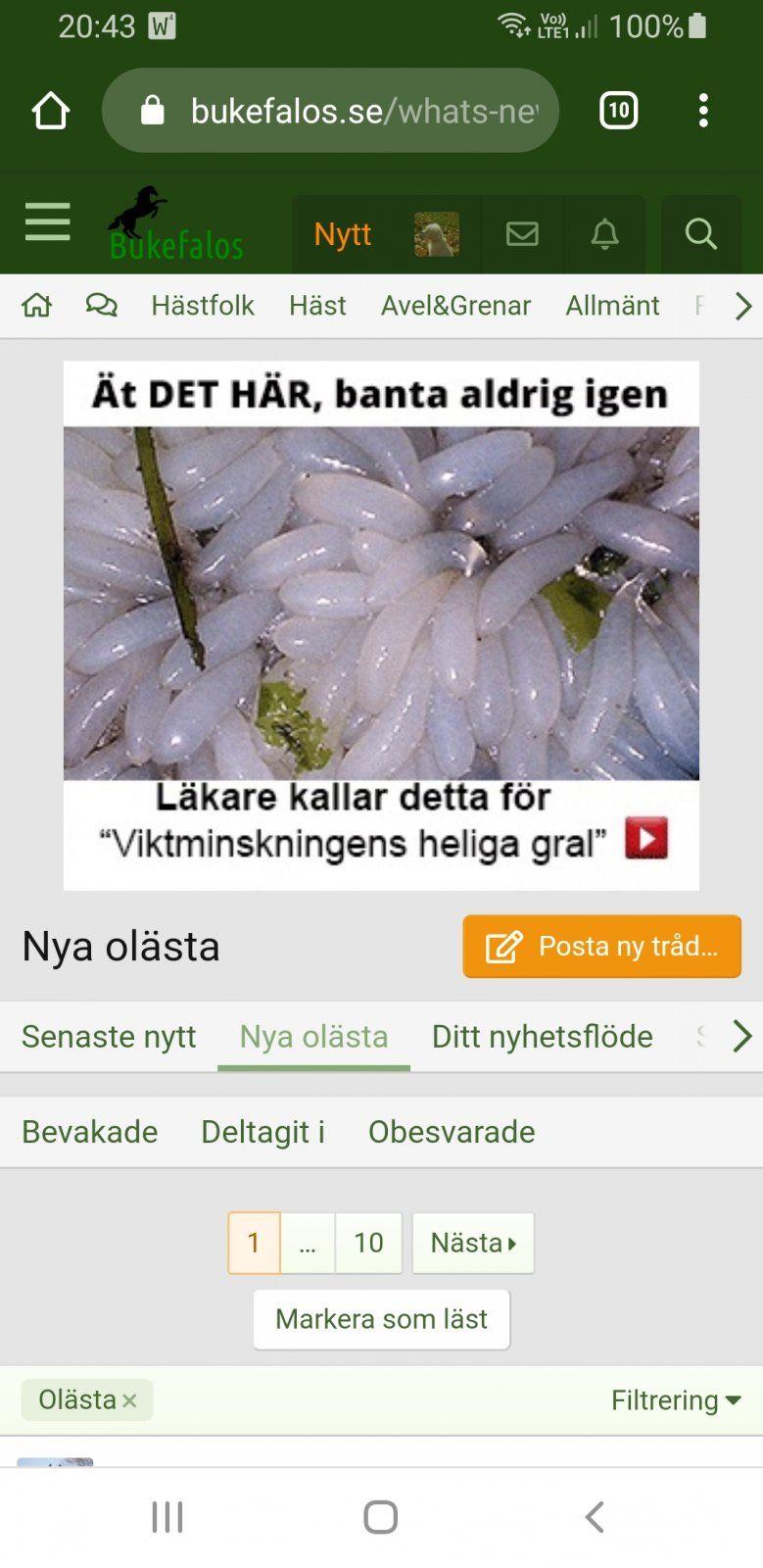 Screenshot_20201017-204349_Chrome.jpg